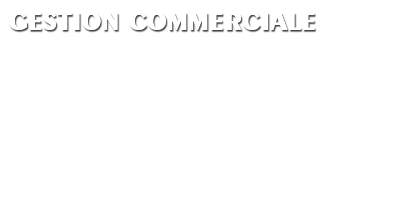 Modules pgi crm commercial